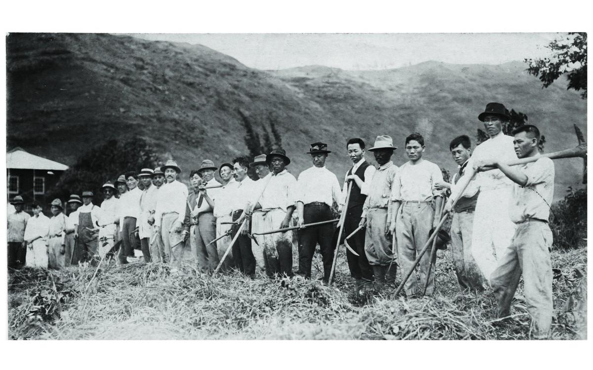 이승만이 여학생 기숙사를 짓기 위해 교포 유지들과 함께 정지작업을 하고 있다. (1916년 12월 25일)<br />